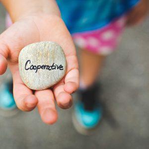 cooperative-1246862_1920